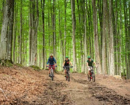 Giro in e-bike monte amiata