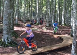 amiata bike resort percorso bambini amiata freeride