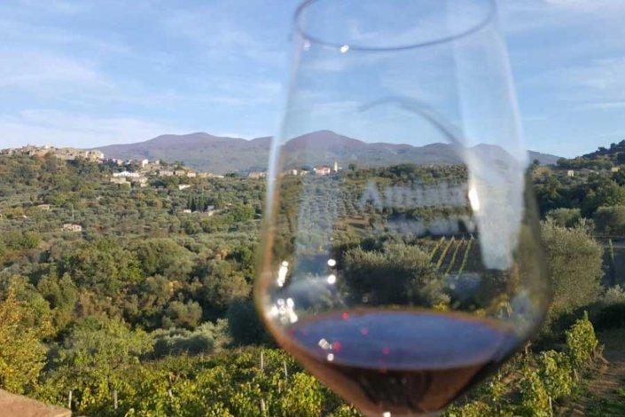 Il monte Amiata e i suoi vini