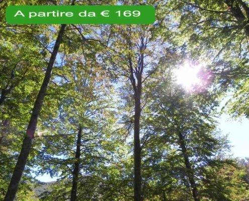relax e natura sul Monte Amiata