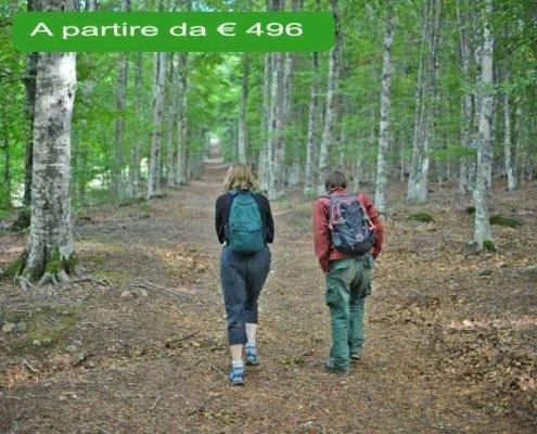 trekking natura monte amiata